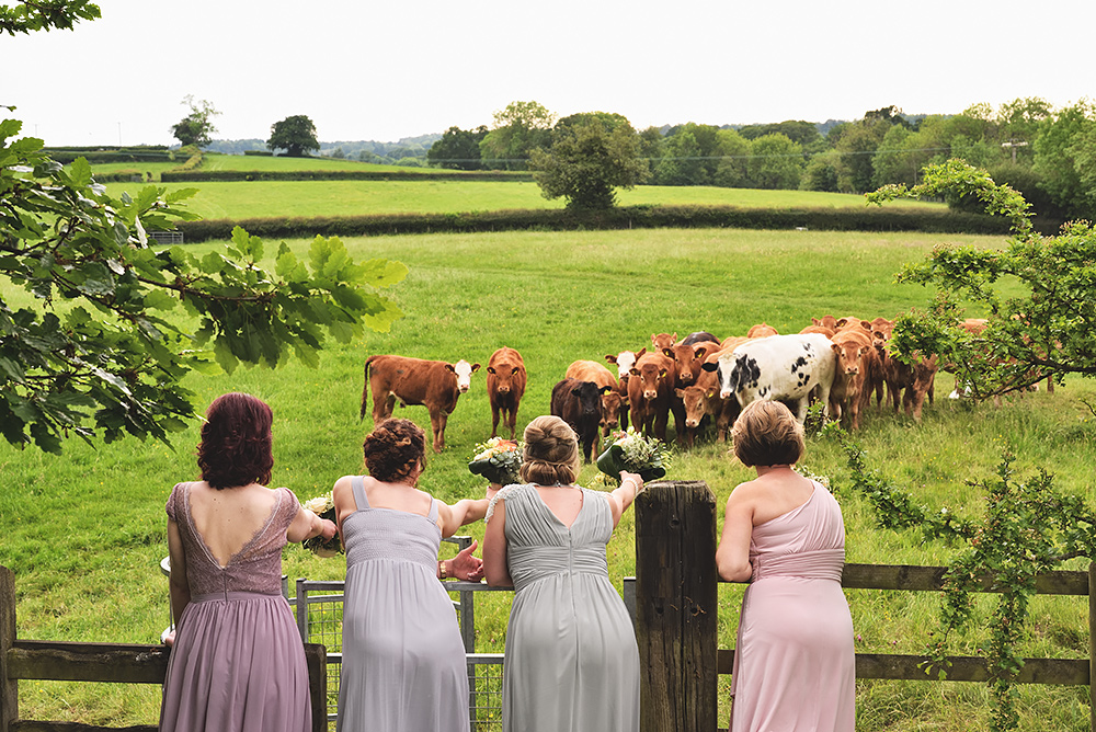 Fun bridesmaids picture taken at Tower Hill Barns